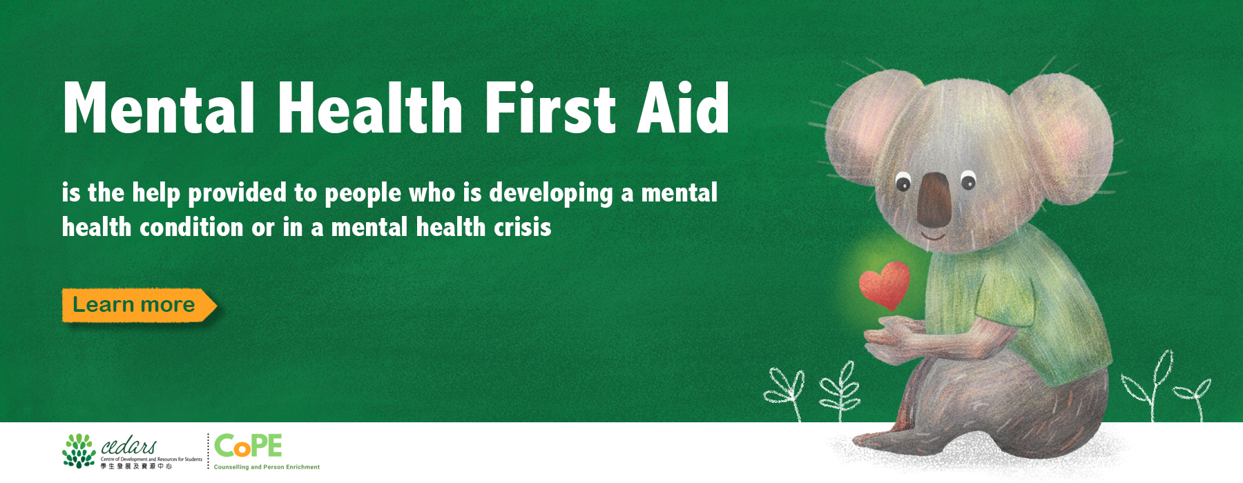 Mental Health First Aid Training at HKU