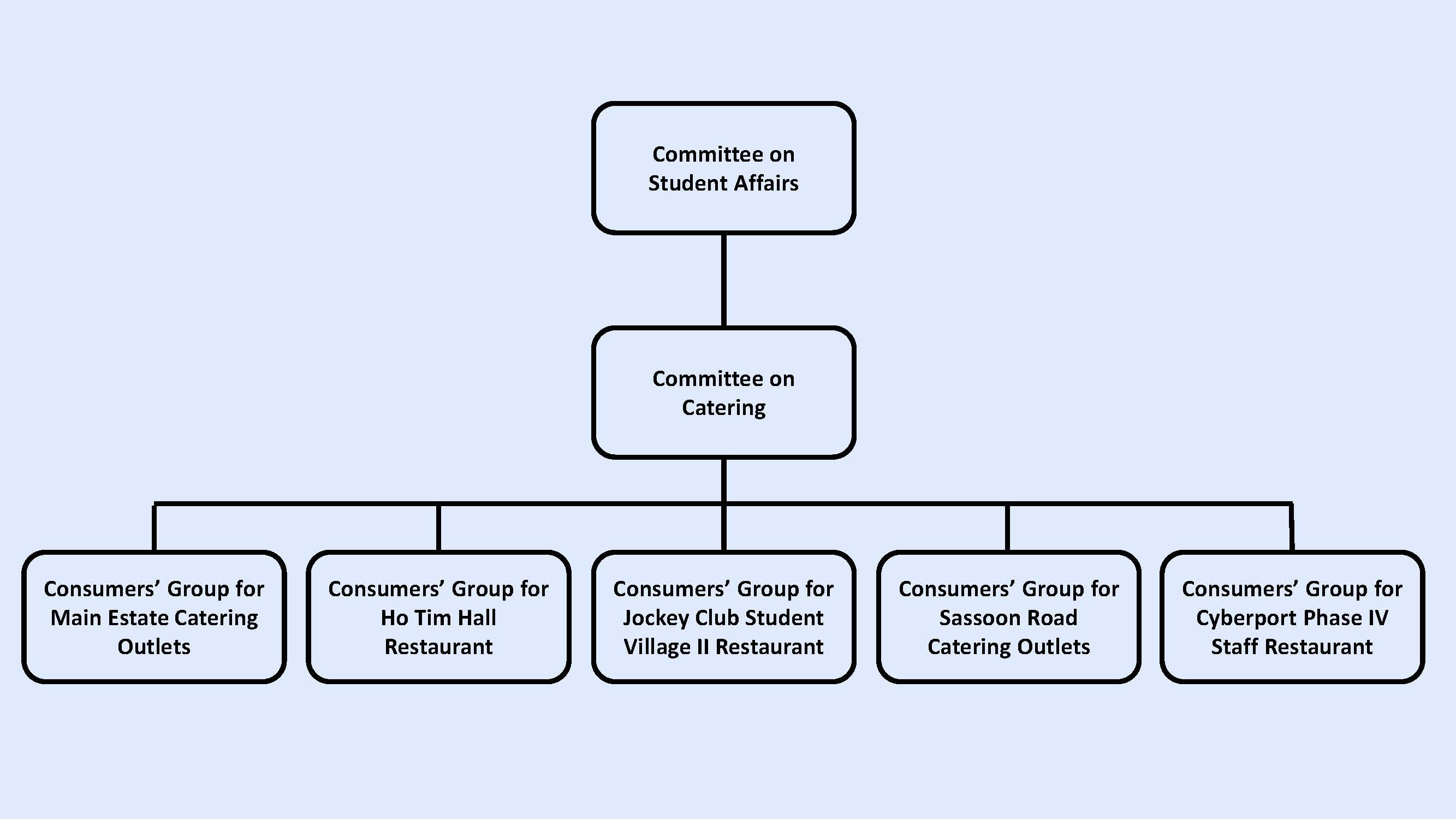 The Committees Structure